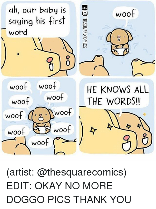 wootly: ah, our baby is  woof  saying his first  word  woof woof  HE KNOWS ALL  Woot THE WORDS  woof  woof  woof  woof  WOO  WOO (artist: @thesquarecomics) EDIT: OKAY NO MORE DOGGO PICS THANK YOU