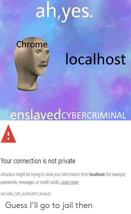 chrome: ah,yes.  Chrome  localhost  enslavedcYBERCRIMINAL  A  Your connection is not private  Attackers might be trying to steal your information from localhost (for example  passwords,messages, or credit cards). Learn more  NET:ERR_CERT_AUTHORITY_INVALID Guess I'll go to jail then