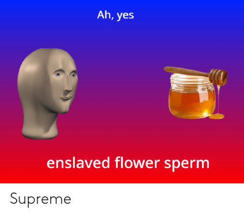 sperm: Ah, yes  enslaved flower sperm Supreme