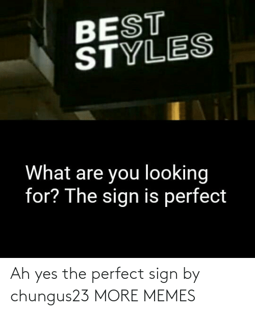 Ah: Ah yes the perfect sign by chungus23 MORE MEMES