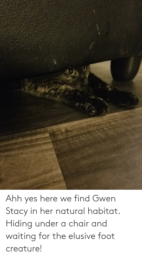 ahh: Ahh yes here we find Gwen Stacy in her natural habitat. Hiding under a chair and waiting for the elusive foot creature!