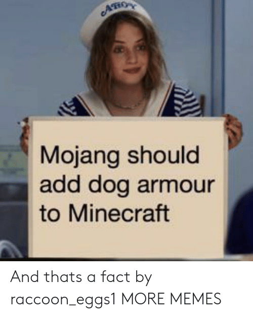 thats a fact: AHO  Mojang should  add dog armour  to Minecraft And thats a fact by raccoon_eggs1 MORE MEMES