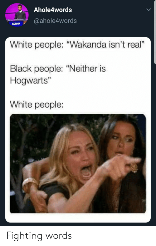 "bailey jay: Ahole4words  $200@ahole4words  White people: ""Wakanda isn't real""  Black people: ""Neither is  Hogwarts""  White people: Fighting words"