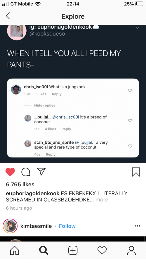 BTS: ail GT Mobile  25%O  22:14  Explore  ig: euphoriagoldenkook  @kooksqueso  WHENI TELL YOU ALL I PEED MY  PANTS-  chris_isc00l What is a jungkook  5 likes  16h  Reply  Hide replies  pujjal._@chris_isc00l it's a breed of  COconut  4 likes  11h  Reply  stan_bts_and_sprite @pujjal._ a very  special and rare type of coconut  40s  Reply  6.765 likes  euphoriagoldenkook FSIEKBFKEKX I LITERALLY  SCREAMED IN CLASSBZOEHDKE... more  6 hours ago  kimtaesmile - Follow  (+)  ос  (+)