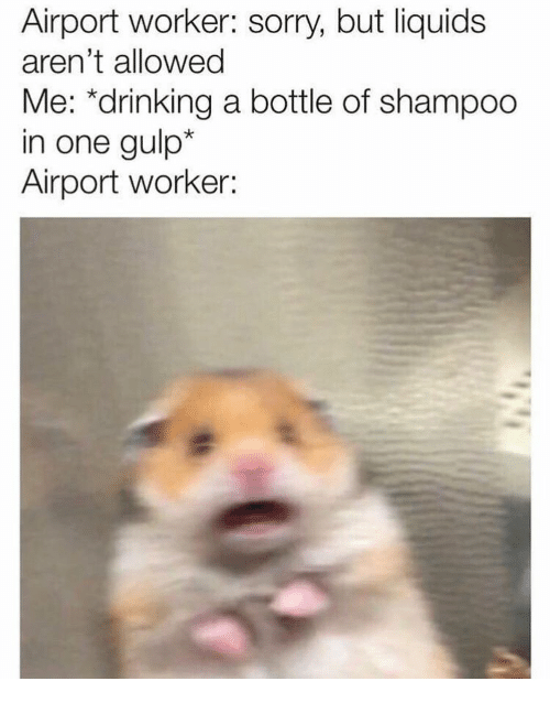 """gulp: Airport worker: sorry, but liquids  aren't allowed  Me: """"drinking a bottle of shampoo  in one gulp*  Airport worker:"""