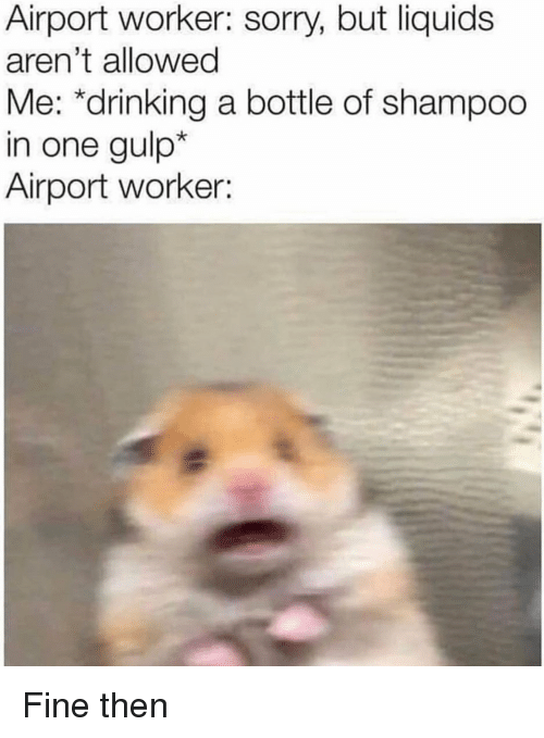 Drinking, Reddit, and Sorry: Airport worker: sorry, but liquids  aren't allowed  Me: *drinking a bottle of shampoo  in one gulp*  Airport worker: