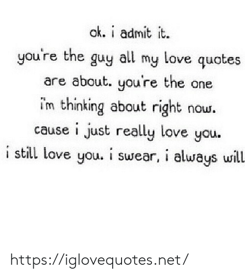 Will Now: ak. i admit it.  you're the guy all my love quotes  are about. you're the one  im thinking about right  cause i just really love you.  i still love you. i swear, i always will.  now. https://iglovequotes.net/