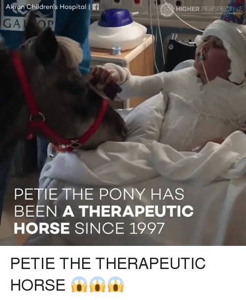 Peted: Akron Children's Hospital l  HIGHER PERSPECTIVE  PETE THE PONY HAS  BEEN A THERAPEUTIC  HORSE SINCE 1997 PETIE THE THERAPEUTIC HORSE 😱😱😱