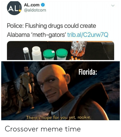 Drugs, Meme, and Police: AL.com  AL@aldotcom  Police: Flushing drugs could create  Alabama 'meth-gators' trib.al/C2urw7Q  Florida:  There's hope for you yet, rookie. Crossover meme time