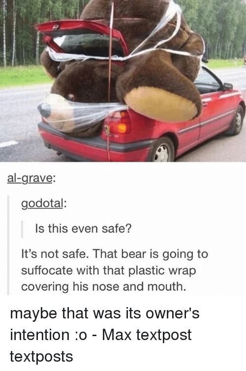 bearings: al-grave:  godotal:  Is this even safe?  It's not safe. That bear is going to  suffocate with that plastic wrap  covering his nose and mouth maybe that was its owner's intention :o - Max textpost textposts