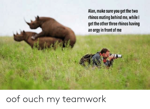 Orgy, Three, and Make: Alan, make sure you get the two  rhinos mating behind me, while l  get the other three rhinos having  an orgy in front of me oof ouch my teamwork