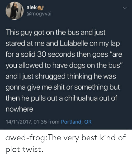 "portland: aleke  @mogvva  This guy got on the bus and just  stared at me and Lulabelle on my lap  for a solid 30 seconds then goes ""are  you allowed to have dogs on the bus""  and I just shrugged thinking he was  gonna give me shit or something but  then he pulls out a chihuahua out of  nowhere  14/11/2017, 01:35 from Portland, OR awed-frog:The very best kind of plot twist."