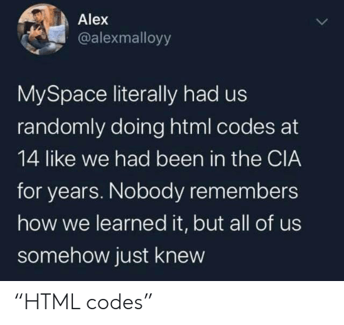 "cia: Alex  @alexmalloyy  MySpace literally had us  randomly doing html codes at  14 like we had been in the CIA  for years. Nobody remembers  how we learned it, but all of us  somehow just knew ""HTML codes"""