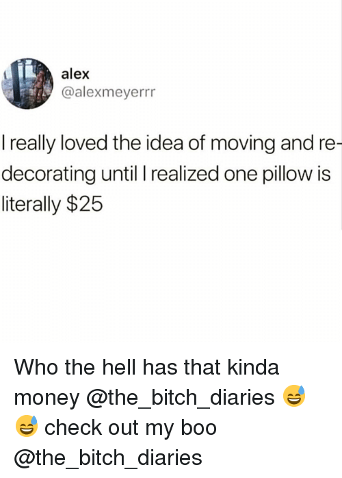 Bitch, Boo, and Funny: alex  @alexmeyerrr  I really loved the idea of moving and re  decorating until I realized one pillow is  literally $25 Who the hell has that kinda money @the_bitch_diaries 😅😅 check out my boo @the_bitch_diaries