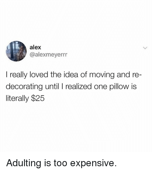 Memes, 🤖, and Idea: alex  @alexmeyerrr  I really loved the idea of moving and re  decorating until I realized one pillow is  literally $25 Adulting is too expensive.