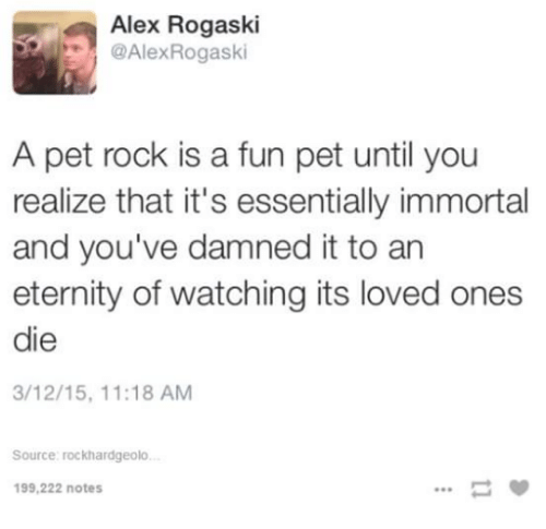 pet rock: Alex Rogaski  @Alex Rogaski  A pet rock is a fun pet until you  realize that it's essentially immortal  and you've damned it to an  eternity of watching its loved ones  die  3/12/15, 11:18 AM  Source: rockhardgeolo.  199,222 notes