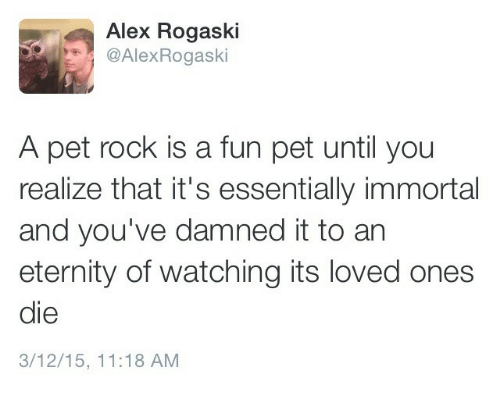 pet rock: Alex Rogaski  AlexRogaski  A pet rock is a fun pet until you  realize that it's essentially immortal  and you've damned it to an  eternity of watching its loved ones  die  3/12/15, 11:18 AM