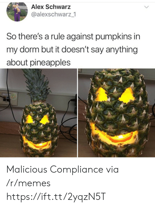 Memes, Malicious, and Say Anything...: Alex Schwarz  @alexschwarz 1  So there's a rule against pumpkins in  my dorm but it doesn't say anything  about pineapples Malicious Compliance via /r/memes https://ift.tt/2yqzN5T