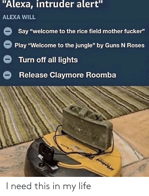 "Welcome To: ""Alexa, intruder alert""  ALEXA WILL  Say ""welcome to the rice field mother fucker""  Play ""Welcome to the jungle"" by Guns N Roses  Turn off all lights  Release Claymore Roomba  FRONT  ENERY  IRobol I need this in my life"