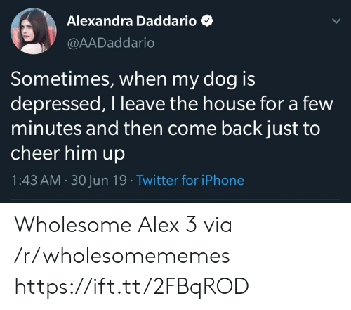Iphone, Twitter, and House: Alexandra Daddario  @AADaddario  Sometimes, when my dog is  depressed, I leave the house for a few  minutes and then come back just to  cheer him up  1:43 AM 30Jun 19 Twitter for iPhone Wholesome Alex 3 via /r/wholesomememes https://ift.tt/2FBqROD