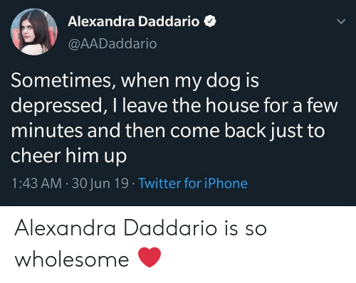Iphone, Twitter, and House: Alexandra Daddario  @AADaddario  Sometimes, when my dog is  depressed, I leave the house for a few  minutes and then come back just to  cheer him up  1:43 AM 30 Jun 19 . Twitter for iPhone Alexandra Daddario is so wholesome ❤️