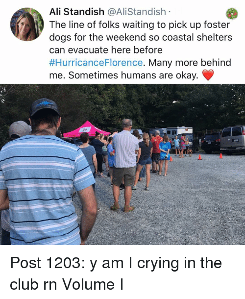 Shelters: Ali Standish @AliStandish  The line of folks waiting to pick up foster  dogs for the weekend so coastal shelters  can evacuate here before  #HurricanceFlorence. Many more behind  me. Sometimes humans are okay. Post 1203: y am I crying in the club rn Volume I