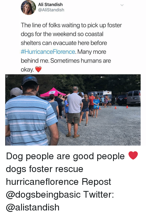 Shelters: Ali Standish  @AliStandish  The line of folks waiting to pick up foster  dogs for the weekend so coastal  shelters can evacuate nere before  #HurricanceFlorence. Many more  behind me. Sometimes humans are  okay. Dog people are good people ❤️ dogs foster rescue hurricaneflorence Repost @dogsbeingbasic Twitter: @alistandish