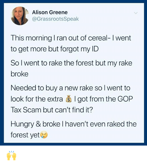 rake: Alison Greene  @GrassrootsSpeak  This morning I ran out of cereal-I went  to get more but forgot my ID  Sol went to rake the forest but my rake  broke  Needed to buy a new rake so I went to  look for the extra š I got from the GOP  Tax Scam but can't find it?  Hungry & broke l haven't even raked the  forest yet& 🙌