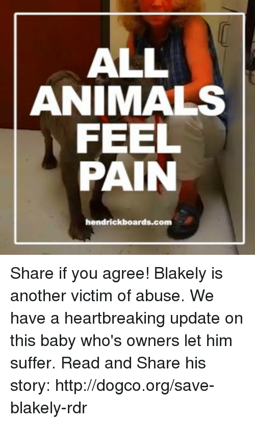 animal feelings: ALL  ANIMALS  FEEL  PAIN  hendrickboards.com Share if you agree!  Blakely is another victim of abuse. We have a heartbreaking update on this baby who's owners let him suffer. Read and Share his story: http://dogco.org/save-blakely-rdr