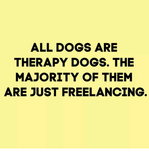 Dogs, Memes, and 🤖: ALL DOGS ARE  THERAPY DOGS. THE  MAJORITY OF THEM  ARE JUST FREELANCING