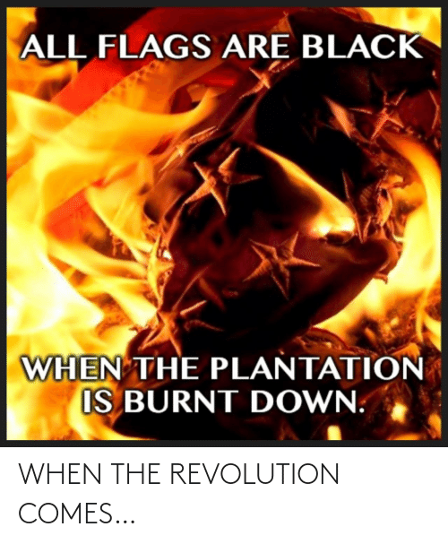 flags: ALL FLAGS ARE BLACK  WHEN THE PLANTATION  IS BURNT DOWN. WHEN THE REVOLUTION COMES…