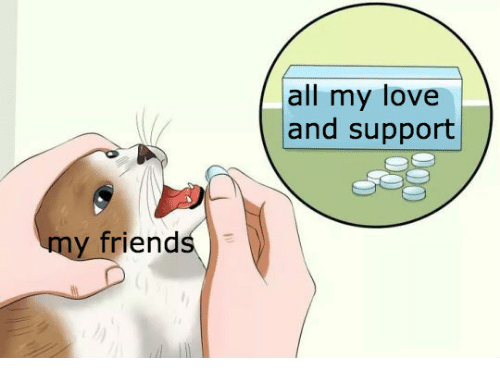 all my love: all my love  and support  friends