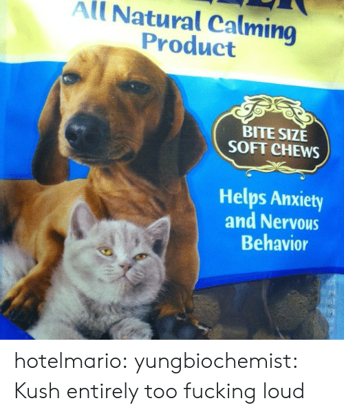Tumblr, Anxiety, and Blog: All Natural Calming  Product  BITE SIZE  SOFT CHEWS  Helps Anxiety  and Nervous  Behavior hotelmario:  yungbiochemist:  Kush entirely too fucking loud