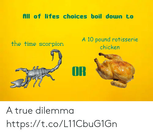 True, Chicken, and Scorpion: All of lifes choices boil down to  A 10 pound rotisserie  the time scorpion  chicken  OR A true dilemma https://t.co/L11CbuG1Gn