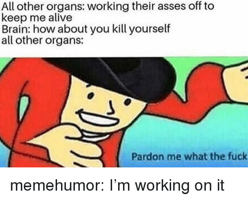 pardon me: All other organs: working their asses off to  keep me alive  Brain: how about you kill yourself  all other organs:  Pardon me what the fuck memehumor:  I'm working on it