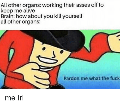 pardon me: All other organs: working their asses off to  keep me alive  Brain: how about you kill yourself  all other organs:  Pardon me what the fuck me irl
