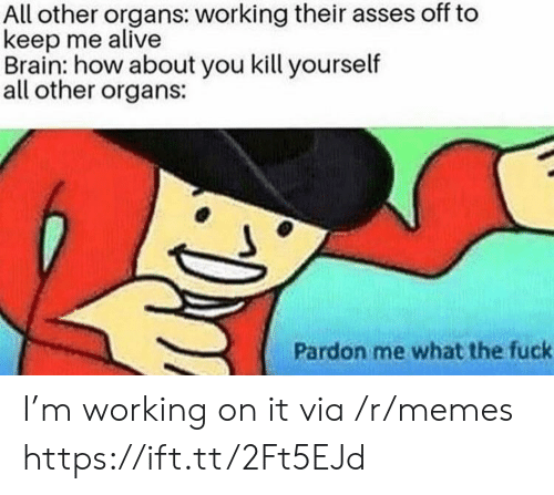 pardon me: All other organs: working their asses off to  keep me alive  Brain: how about you kill yourself  all other organs:  Pardon me what the fuck I'm working on it via /r/memes https://ift.tt/2Ft5EJd
