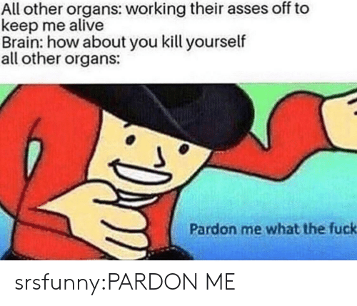 Alive, Tumblr, and Blog: All other organs: working their asses off to  keep me alive  Brain: how about you kill yourself  all other organs:  Pardon me what the fuck srsfunny:PARDON ME