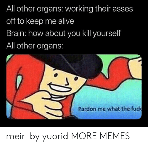 pardon me: All other organs: working their asses  off to keep me alive  Brain: how about you kill yourself  All other organs:  Pardon me what the fuck meirl by yuorid MORE MEMES