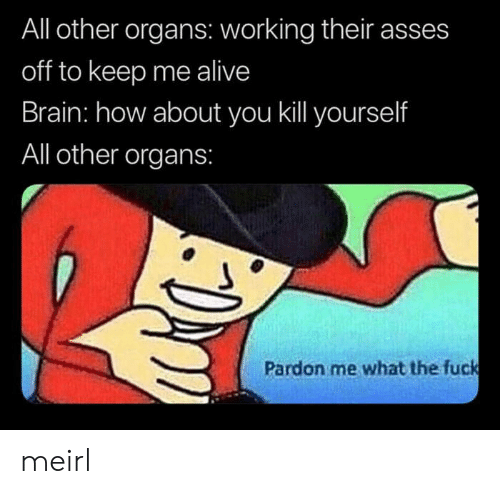 pardon me: All other organs: working their asses  off to keep me alive  Brain: how about you kill yourself  All other organs:  Pardon me what the fuck meirl