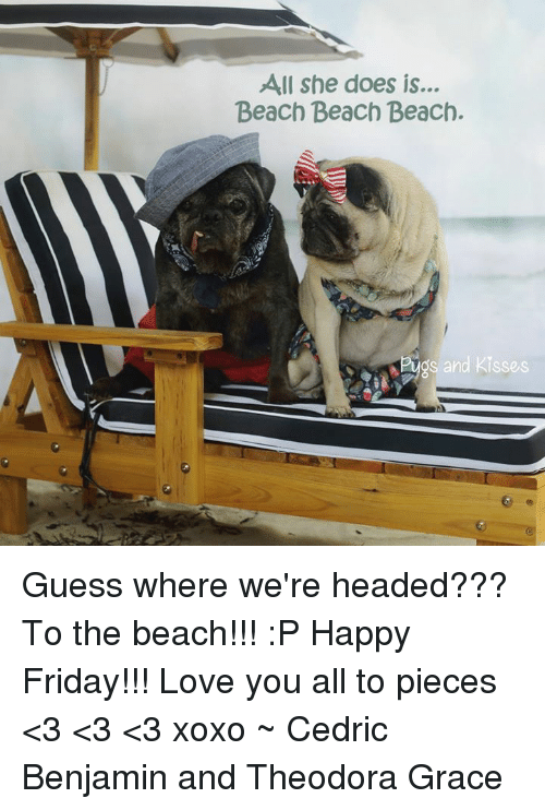Friday, Love, and Memes: All she does is...  Beach Beach Beach.  ug  s and Kisses Guess where we're headed??? To the beach!!!  :P Happy Friday!!! Love you all to pieces <3 <3 <3 xoxo  ~ Cedric Benjamin and Theodora Grace