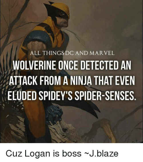 Spider Senses: ALL THINGS DC AND MARVEL  WOLVERINE ONCE DETECTED AN  ATTACK FROM A NINJA THAT EVEN  ELUDED SPIDEY'S SPIDER-SENSES Cuz Logan is boss ~J.blaze
