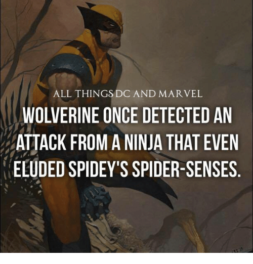 Spider Senses: ALL THINGS DC AND MARVEL  WOLVERINE ONCE DETECTED AN  ATTACK FROM A NINJA THAT EVEN  ELUDED SPIDEY'S SPIDER-SENSES