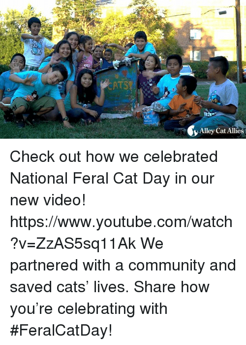 alley cats: Alley Cat Allie Check out how we celebrated National Feral Cat Day in our new video!  https://www.youtube.com/watch?v=ZzAS5sq11Ak  We partnered with a community and saved cats' lives. Share how you're celebrating with #FeralCatDay!