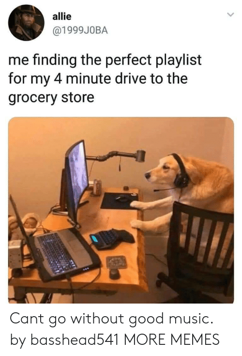 Dank, Memes, and Music: allie  @1999J0BA  me finding the perfect playlist  for my 4 minute drive to the  grocery store Cant go without good music. by basshead541 MORE MEMES