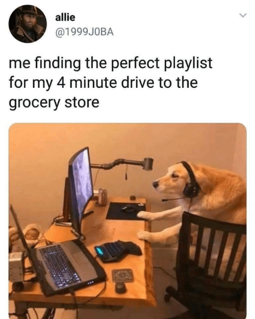 Drive, Store, and For: allie  @1999JOBA  me finding the perfect playlist  for my 4 minute drive to the  grocery store