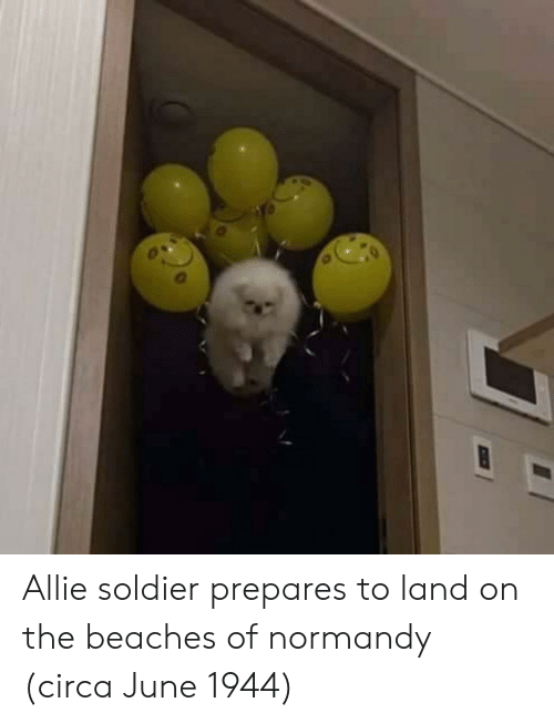 normandy: Allie soldier prepares to land on the beaches of normandy (circa June 1944)
