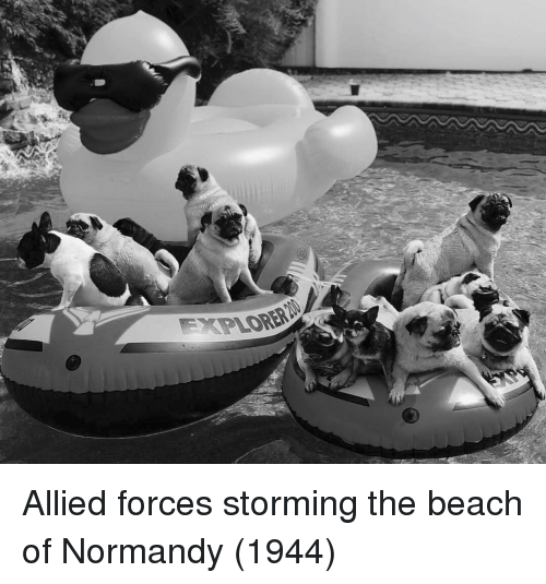 normandy: Allied forces storming the beach of Normandy (1944)