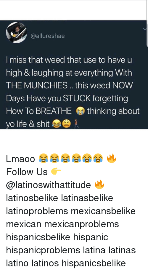 munchies: @allureshae  I miss that weed that use to have u  high & laughing at everything With  THE MUNCHIES. this weed NoW  Days Have you STUCK forgetting  How To BREATHE thinking about  yo life & shit Lmaoo 😂😂😂😂😂😂 🔥 Follow Us 👉 @latinoswithattitude 🔥 latinosbelike latinasbelike latinoproblems mexicansbelike mexican mexicanproblems hispanicsbelike hispanic hispanicproblems latina latinas latino latinos hispanicsbelike