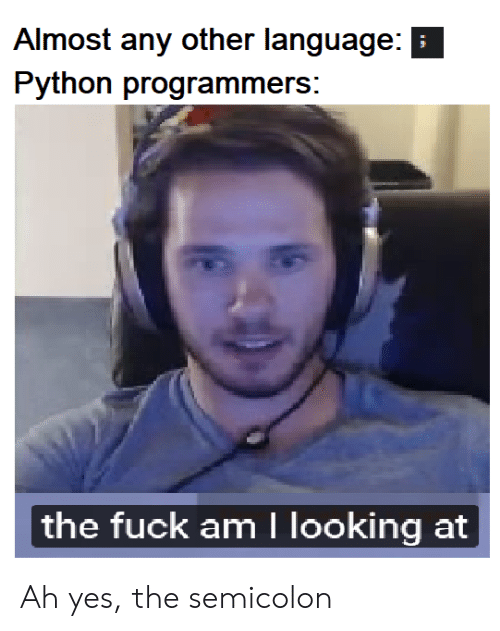 semicolon: Almost any other language:  Python programmers:  the fuck am I looking at Ah yes, the semicolon